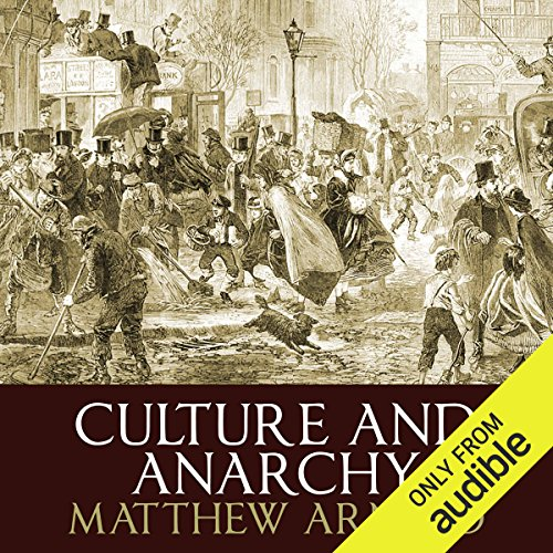 Culture and Anarchy audiobook cover art