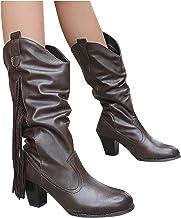 Dasongff Hoge dameslaarzen met hak en franjes, lange laarzen voor vrouwen, trechterhak, sneeuwlaarzen, dames, waterdicht, ...