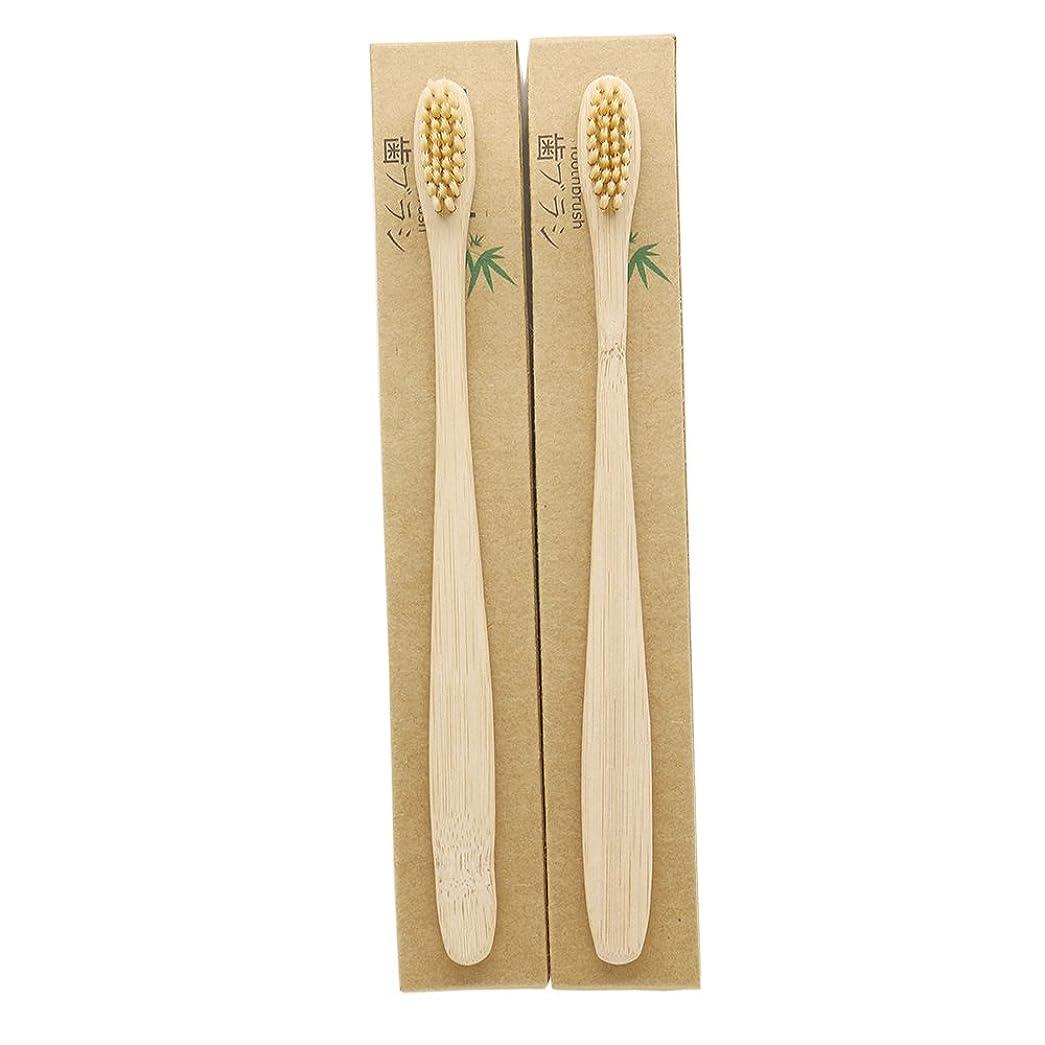 頭吸収剤構成員N-amboo 竹製耐久度高い 歯ブラシ 2本入り セット エコ ヘッド小さい クリ—ム色