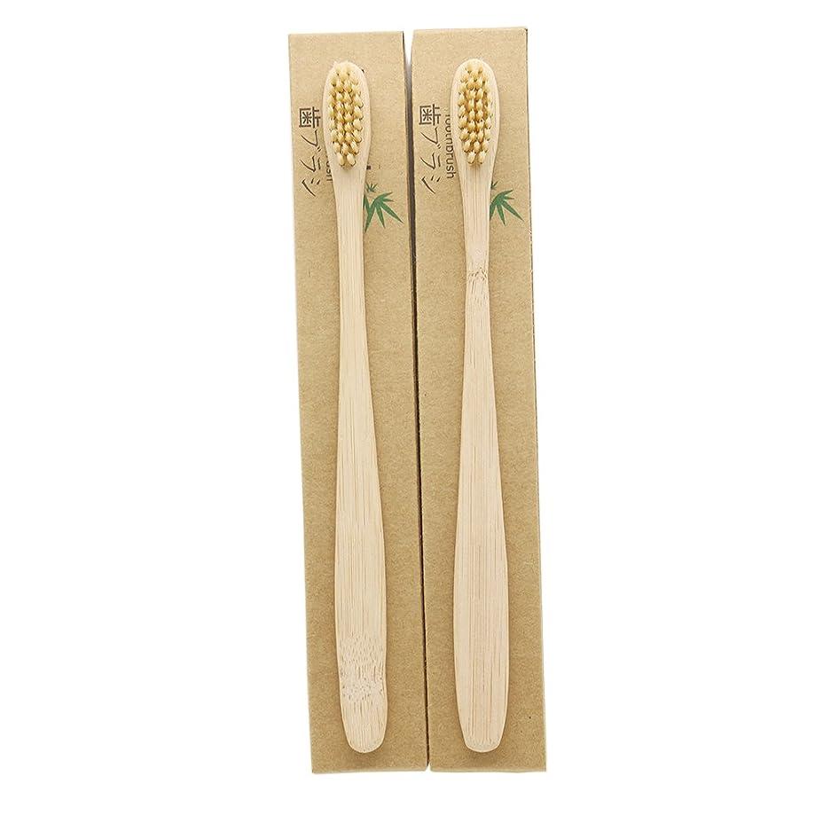 階層ナイトスポット上院N-amboo 竹製耐久度高い 歯ブラシ 2本入り セット エコ ヘッド小さい クリ—ム色