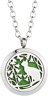Jenia Essential Oil Diffuser Necklace Aromatherapy Pendant Stainless Steel Locket for Women, Kids, Boy, Girl