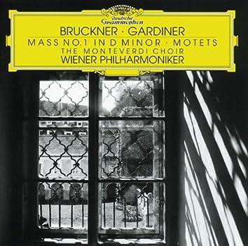 Bruckner: Mass in D minor; Motets