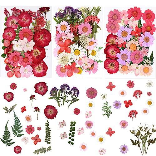 Wolfteeth 95 piezas Naturaleza flores secas prensadas hojas secas, para scrapbooking, artesanía artística, bricolaje, joyas de resina, vela, fabricación de jabón, decoración 04