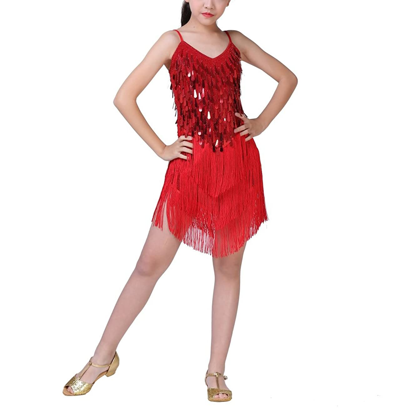 Loveble Latin Dance Dress Rumba Salsa Samba Chacha Tango Kids Girls Tassel Sequin Skirt Latin Costume