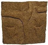 Dragon - Kokosfaserrückwand mit Pflanztaschen 50x50cm