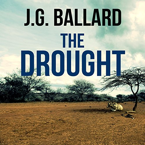 The Drought audiobook cover art