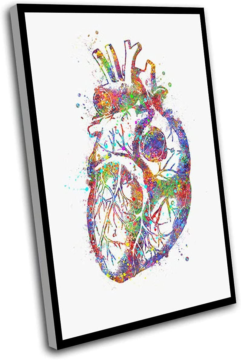 Canvas Wall Art specialty shop Heart Outlet sale feature Anatomy Artwork Watercolour Poster Wal