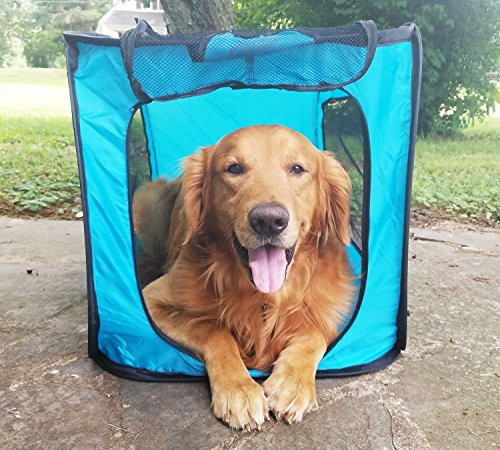 Bark Brite Pop Open Collapsible Travel Crate in 2 Sizes Large