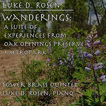 Wanderings: A Suite of Experiences from Oak Openings Preserve Metropark