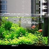 Zoom IMG-1 everfarel filtro interno acquario all