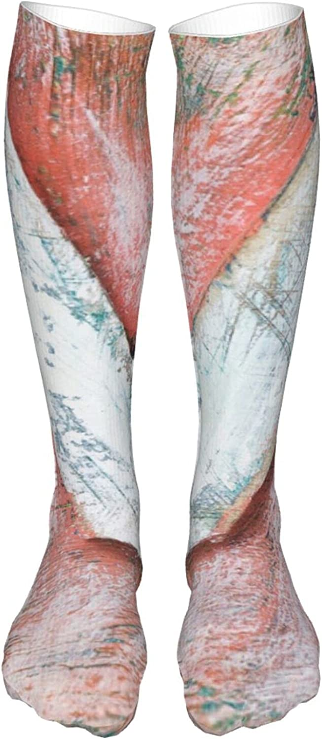 5% Max 61% OFF OFF Thigh High Socks Cotton Over Novelty Soc the Athletic Knee