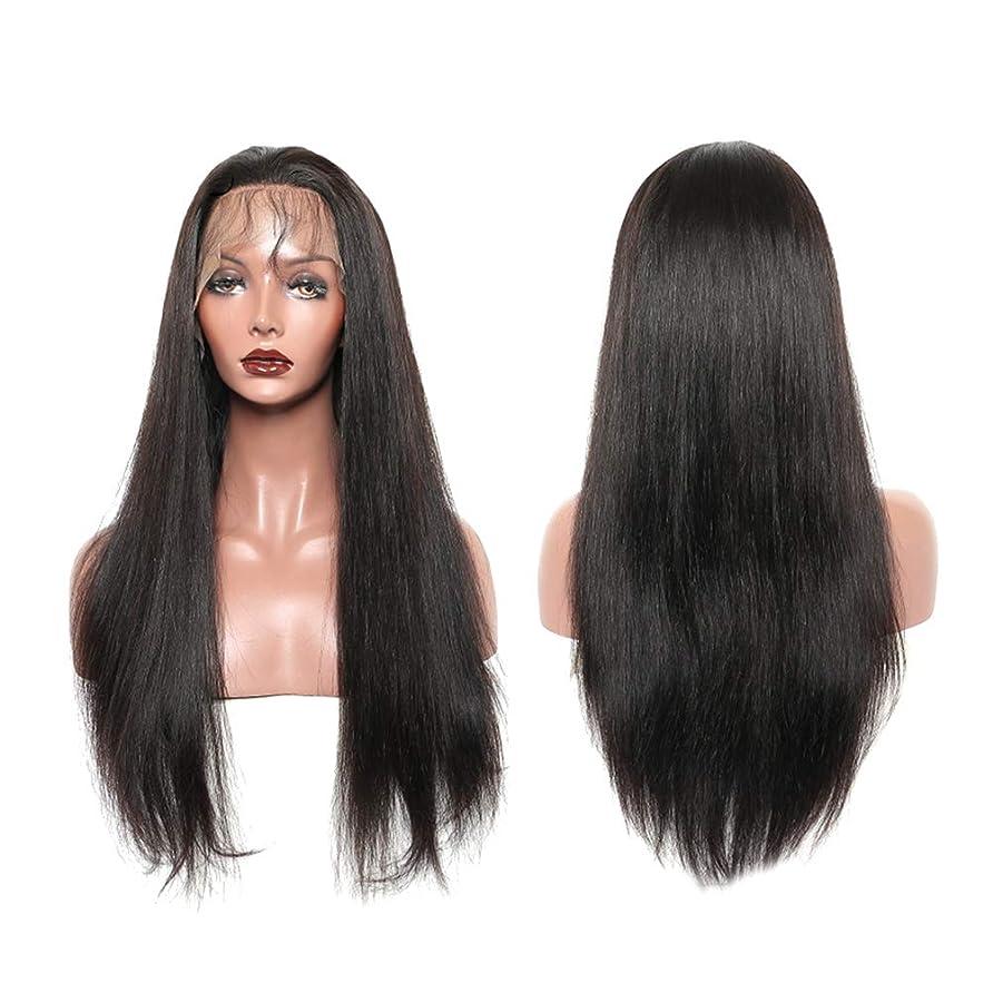 深める無知火薬女性ファッションロングストレートヘアウィッグフロントレースヘアーウィッグ自然に見える絶妙な弾性ネットウィッグカバー(LS-110-ブラック)