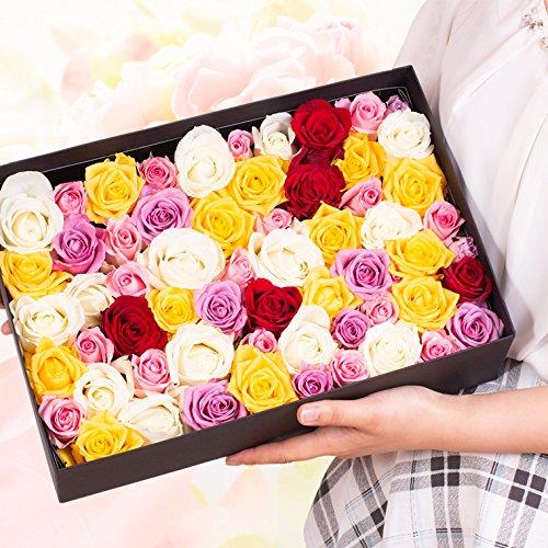 バラ風呂ギフト 約65輪~80輪 ローズバス 薔薇風呂 ばら風呂 フラワーシャワー フラワーバス サプライズ バレンタイン for bath with roses petals バレンタイン