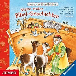Meine ersten Bibel-Geschichten Titelbild