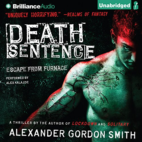 Death Sentence audiobook cover art