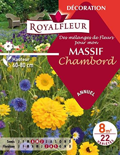 Royalfleur PFRE08692 Graines de des Mélange de Fleurs mon Massif Chambord 8 m²