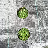 Originline Weed Control Fabric Planting Holes - Ground Cover Weed Barrier - Eco-Friendly for Vegetable Garden Landscape, 3 feet by 12 feet