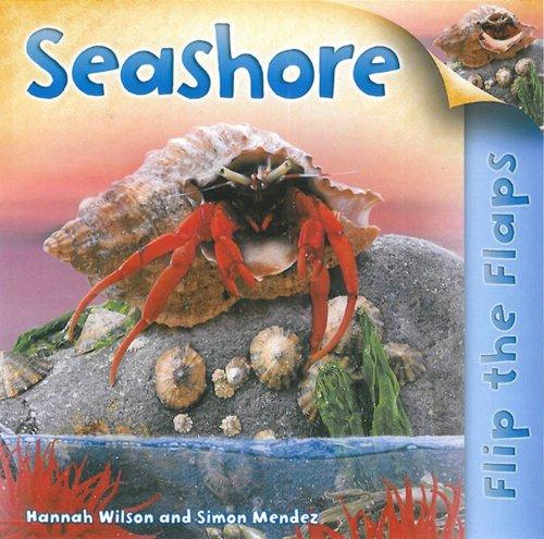 Seashore (Flip the Flaps)