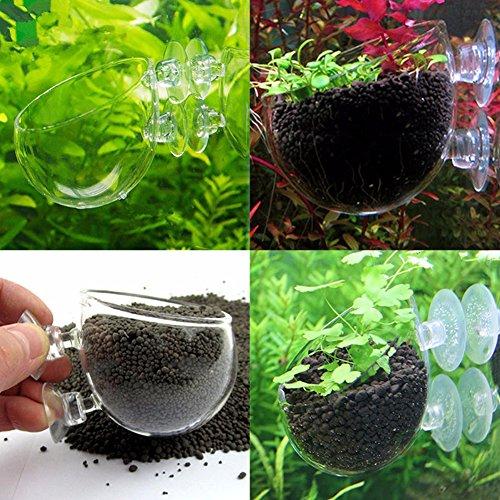Patzbuch Blumentopfhalter, Mini-Garnelen-Aquarium, Aquarium, Kristall, Glas, Blumentopf, Blumentopf, Behälter, Saugnapf, Dekoration