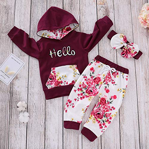 Find Discount topseller-hzy 3 Pieces/Set Newborn Toddler Baby Girl Fashion Suit Flower Print Hooded Hoodie Shirt Sun Suit
