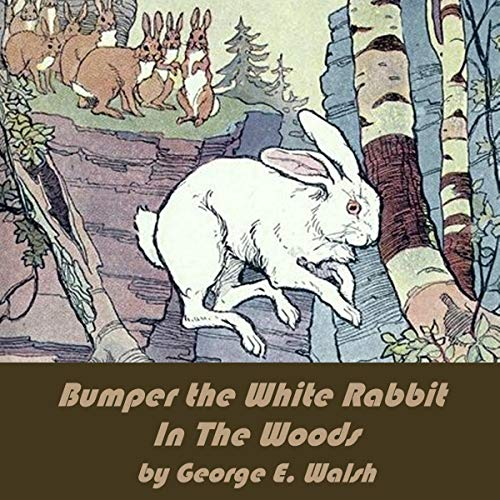 Bumper the White Rabbit in the Woods                   By:                                                                                                                                 George Ethelbert Walsh                               Narrated by:                                                                                                                                 Tom Weiss                      Length: 2 hrs and 9 mins     Not rated yet     Overall 0.0