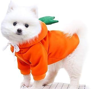 FILWO 1 St/ück Hund Spitzenkleid Welpenband Kleid Sommer Blumen Haustier Hund d/ünne Kleidung Hund Katze Welpe Kitty