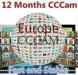 ARBUYSHOP 12 Meses Europa Cccam Cline Estable servidor durante 1 año decodificador receptor satelital Sky España Reino Unido Alemania Francia Italia Iks Cccam