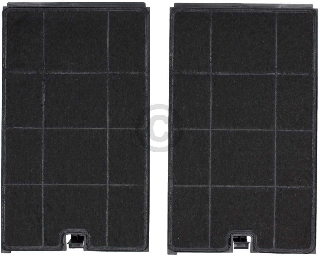 2 filtros de carbón DL-pro para campana extractora Whirlpool Bauknecht 484000008675 Wpro CHF035 Type35 Indesit C00384663