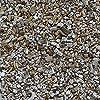 semillas-hierba-gatera