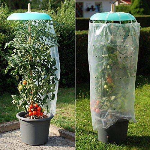 tomgarten Tomatenhut Starter Set | 3 TLG.