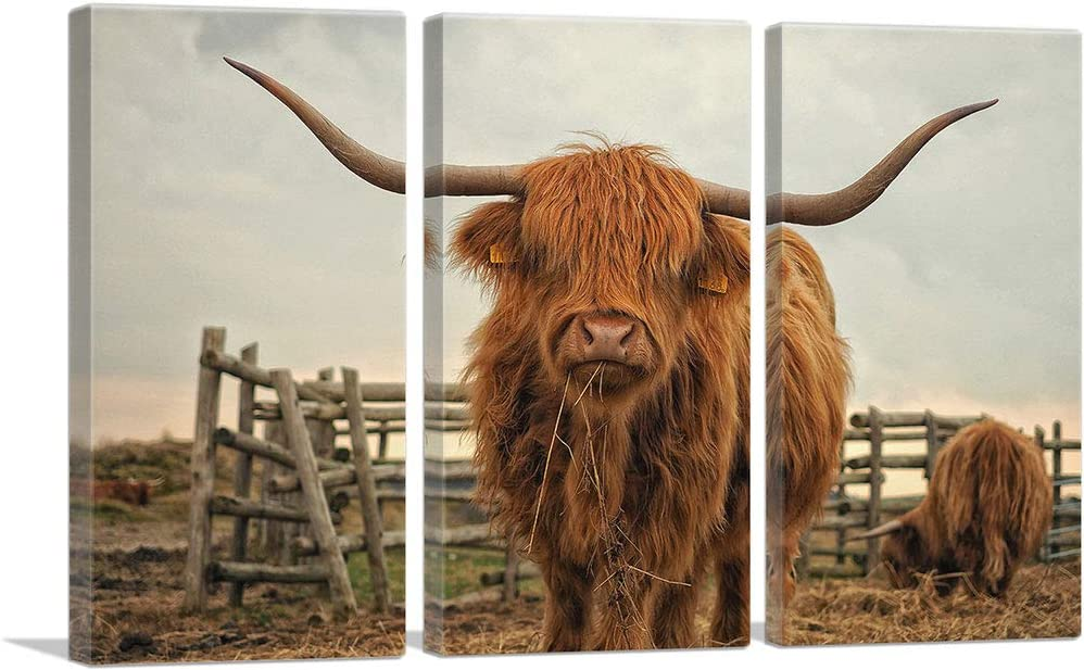 ARTCANVAS Highland Cow Cattle Max 51% OFF Stable Canvas Print x - 60