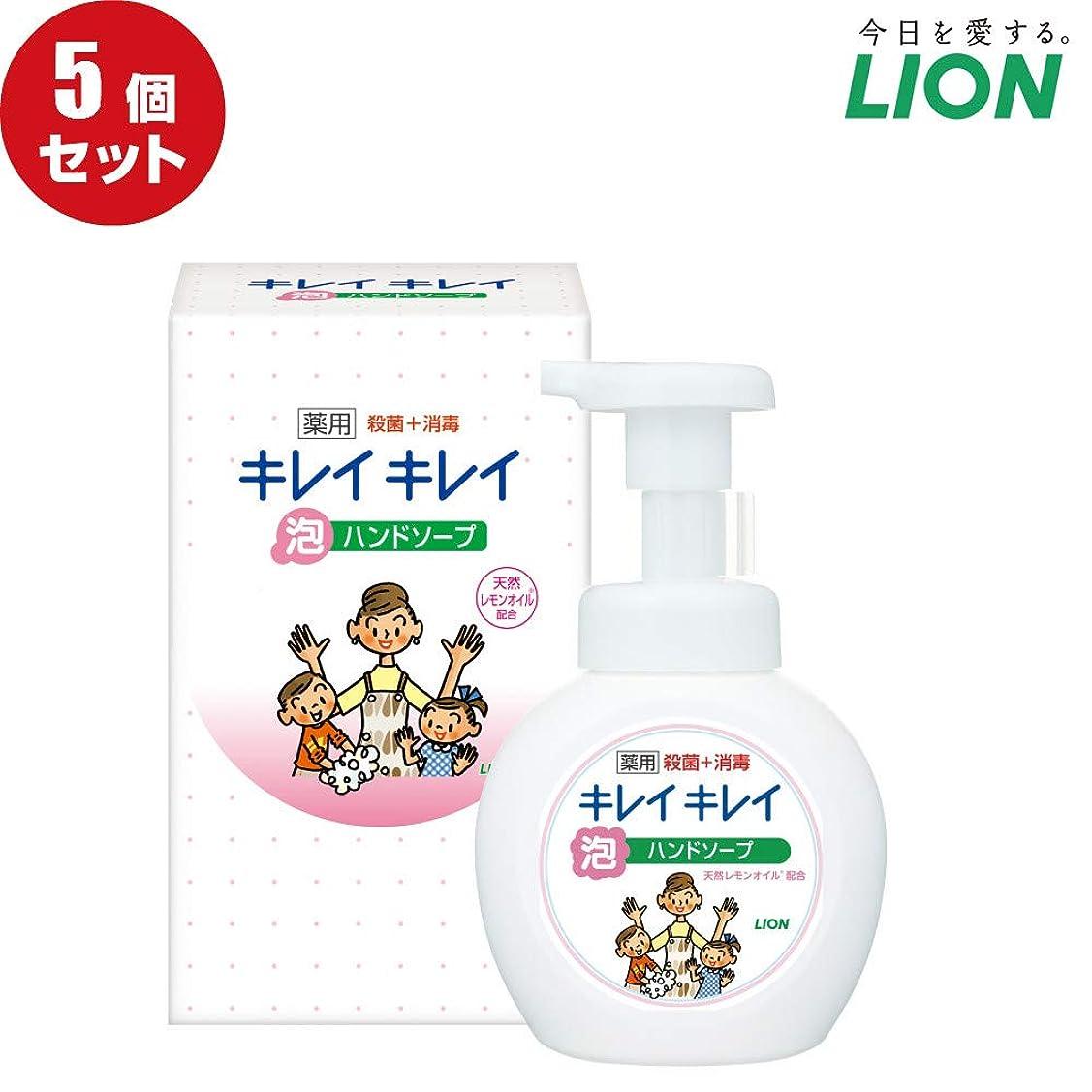 迅速空ゼロ【5個セット】LION キレイキレイ薬用泡ハンドソープ250ml ノベルティギフト用化粧箱入