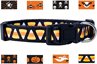 Native Pup Halloween Dog Collar