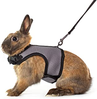 Niteangel Adjustable Soft Harness Elastic Leash Rabbits (S, Grey)