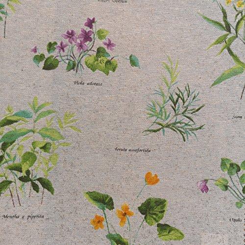 Beschichtete Baumwolle Streublumen Landhaus Sommerblumen (Meterware, Qualität Zum Nähen) (50 x 140 cm) (50 x 140 cm)