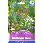 Wildflowers 350 Wild Flowers Seeds/Throw and Grow/Attractive to Butterfly & bee/Field/Meadow 12/2021/Scatter and Grow