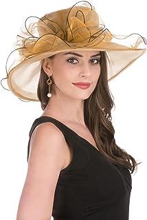 Women's Organza Church Kentucky Derby Hat Feather Veil Fascinator Bridal Tea Party Wedding Hat