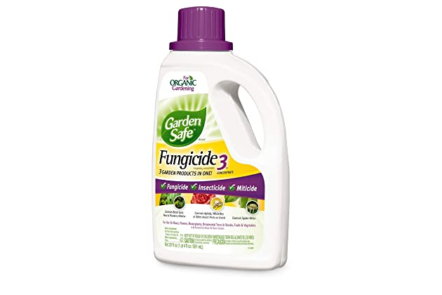 Best fungicides for roses | Amazon com