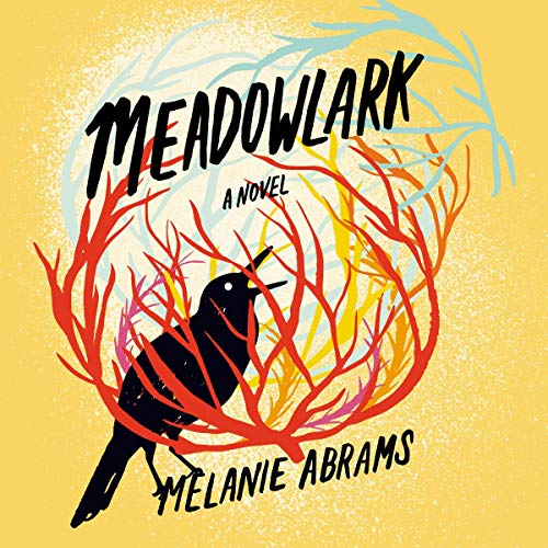 Meadowlark cover art