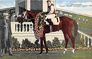 Gallahadion Winner of 1940 Kentucky Derby Clark County, Kentucky, KY, USA Old Vintage Horse Racing Postcard Post Card