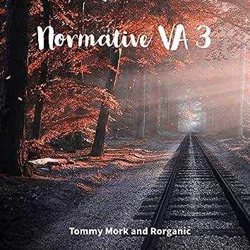 Normative VA 3