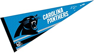 WinCraft Carolina Panthers Pennant Banner Flag