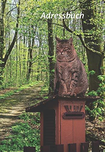 Adressbuch: Buch für Telefonnummern, E-Mails, Geburtstage, Jahrestage und wichtige Informationen mit einer Katze auf einem Briefkasten (Katzen, Band 1)