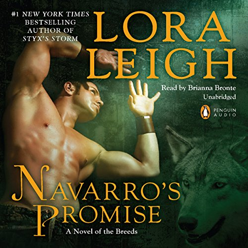 Navarro's Promise audiobook cover art