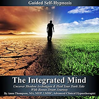 The Integrated Mind Titelbild