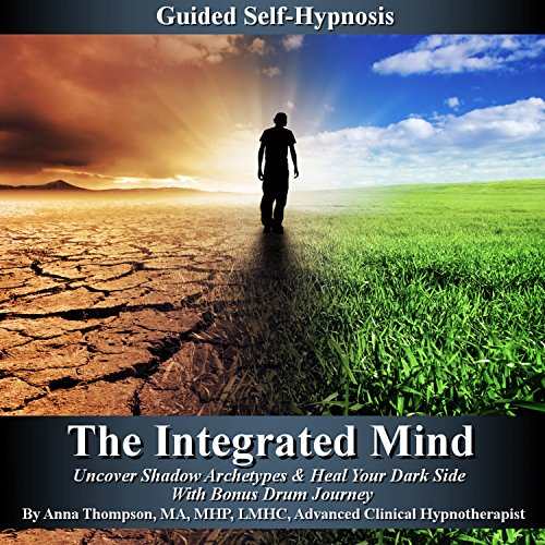 The Integrated Mind cover art