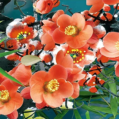 Msrahves Fotomurales decorativos Rojo plantas flores luna. Fotomurales 3D XXL Papel pintado tejido no tejido Decoración de Pared decorativos Murales moderna Diseno Fotográfico