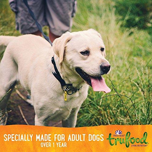 Wellness Trufood Baked Blends Natural Grain Free Dry Raw Dog Food, Salmon, Turkey & Flaxseed,...