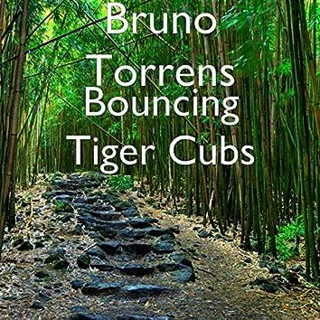 Bouncing Tiger Cubs