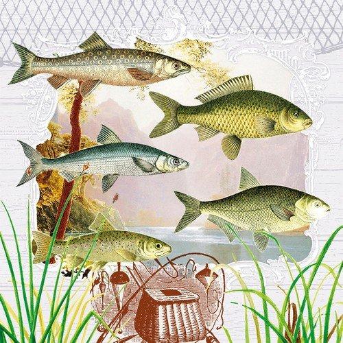 20 Servietten Fische im Portrait/Tiere/See/Angeln 33x33cm